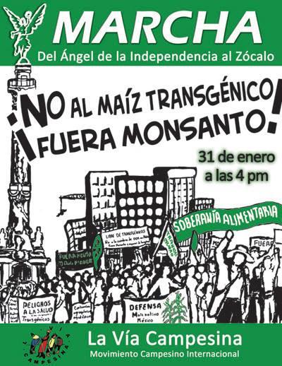 Enero 31, Marcha vs Maíz transgénico 4 PM Ángel al Zócalo ¡Fuera Monsanto!