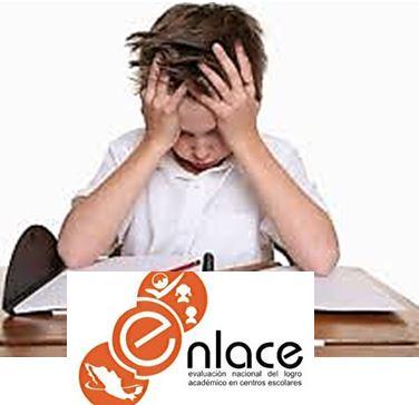 Examen Enlace: capricho empresarial